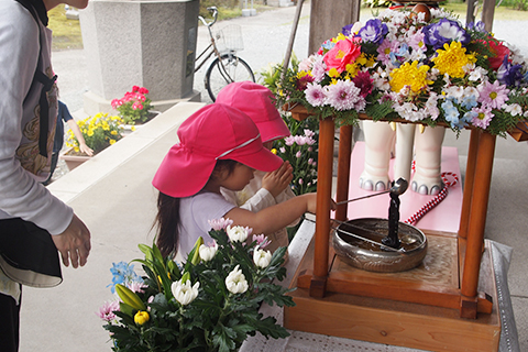 お隣の傳心寺さんに伺い、はなまつりのお祝いをします。